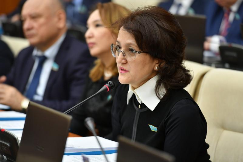 Д.Нурманбетова: считаю, что законопроект о противодействии семейно-бытовому насилию возможно отозвать и доработать