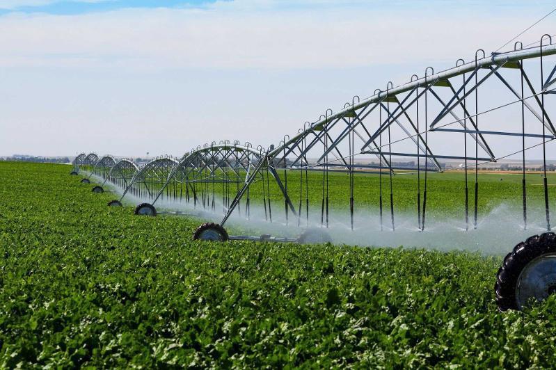 Надо активнее внедрять на полях водосберегающие технологии - Бердибек Сапарбаев