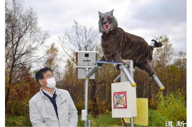 Japonııada qurastyrylǵanrobot-qasqyr ańdardy úrkitip jatyr