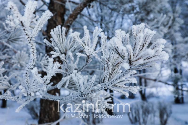 Туман, гололед и морозы прогнозируют синоптики 25 января в Казахстане