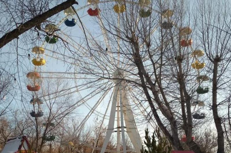 Стихи зазвучали в центральном парке Караганды