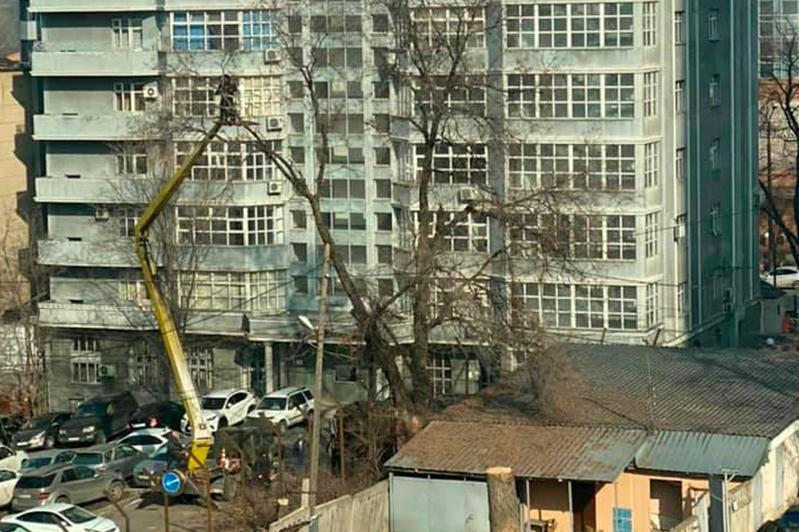 Алматылықтар  әл-Фараби даңғылындағы құрылысты тоқтатуды талап етті