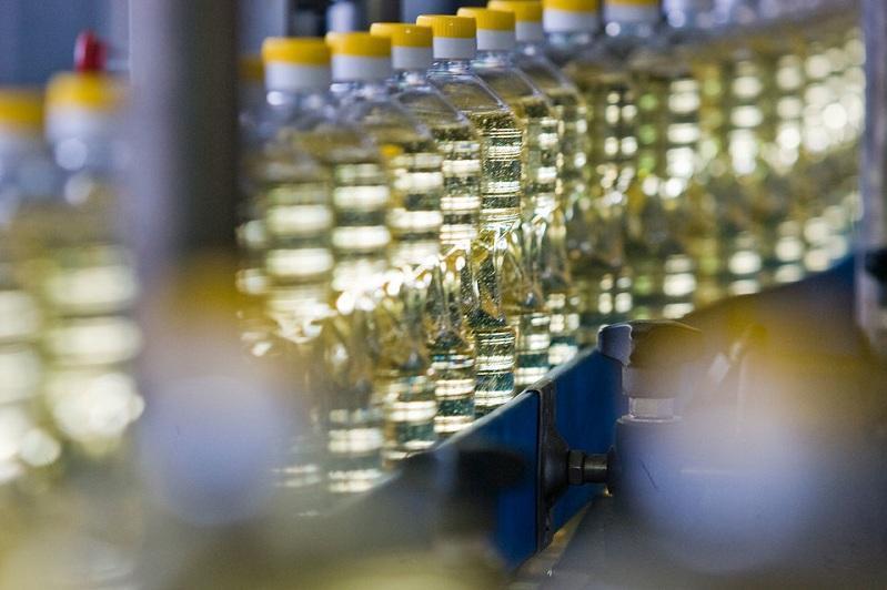 东哈州将启动两个大型油籽加工厂项目