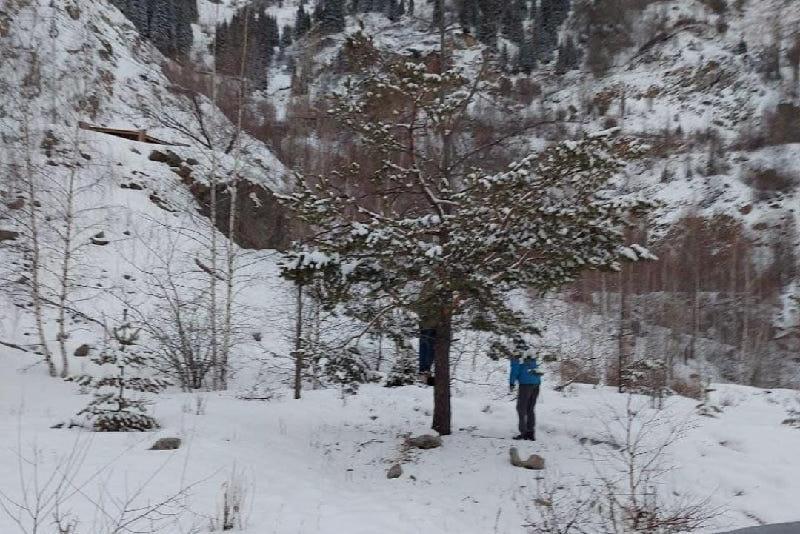 Тело женщины нашли в горах близ Алматы