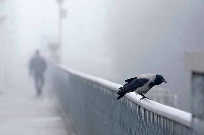 Снег, туман и гололед ожидается на большей части территории Казахстана