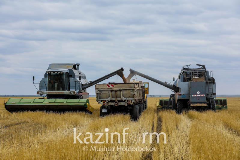 2020年哈萨克斯坦农作物收获信息