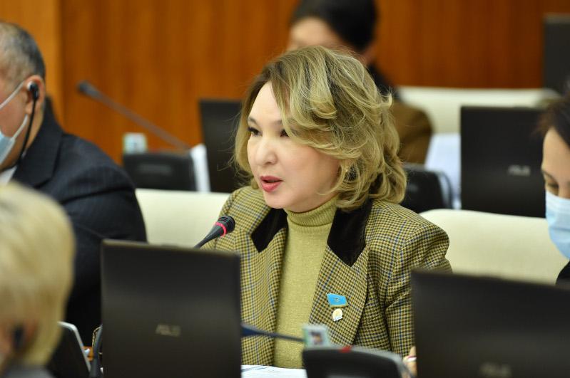 Депутаты просят внести изменения в госпрограмму «Нұрлы жер»
