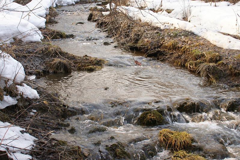 Русла рек очистили в Алматы