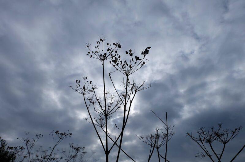 В трех городах Казахстана 9 марта ожидаются неблагоприятные метеоусловия
