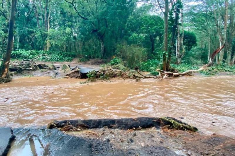 美国夏威夷毛伊岛水坝溃堤酿洪灾