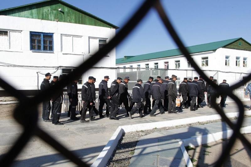 Договор с Болгарией о передаче осужденных лиц приняли в Сенате