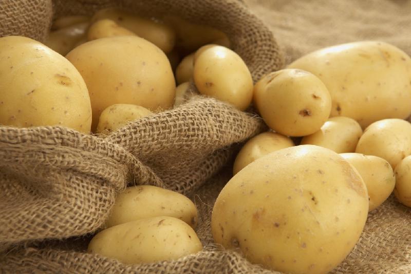 Предельно допустимые цены на растительное масло и картофель установят в СКО