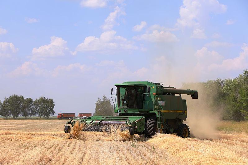 Организация сельхозработ онлайн, «цифровой агроном» и посев озимых: как работает «Олжа Агро» в Костанайской области