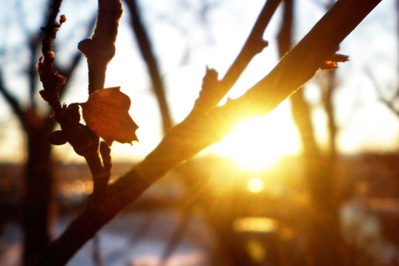 Қазгидромет: алдағы аптада күн күрт жылынады