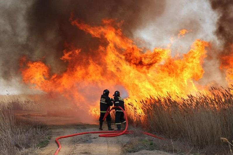 На берегу Каспия горят тростниковые заросли