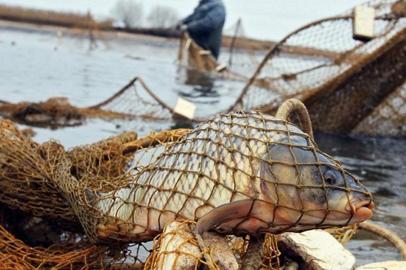 Рыбалку запретили на канале имени Каныша Сатпаева