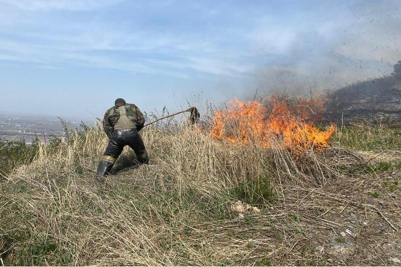 Загорание сухостоя едва не перекинулось на кладбища в Алматы