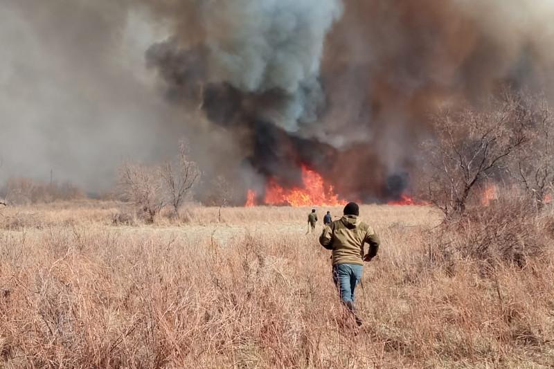 Огнеборцы Алматинской области продолжают борьбу с пожарами в Балхашском районе