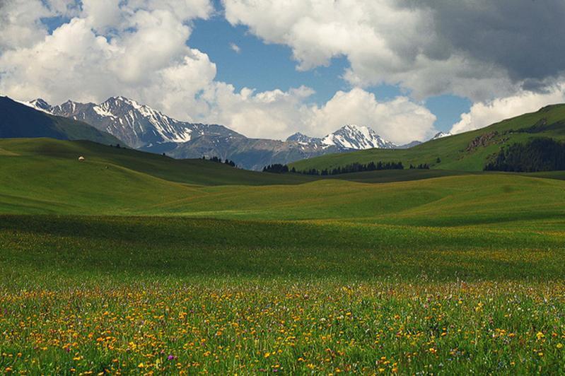 土地改革委员会建议农业土地租赁期限为49年