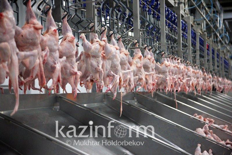 Производитель куриного мяса снизил цену на продукцию в Туркестанской области
