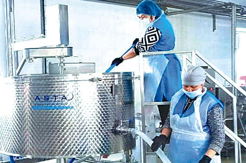 Число предприятий по производству молока увеличивается в Акмолинской области
