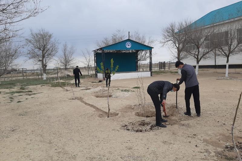 Киелі табиғат: Ақтөбелік оқушылар мектеп ауласы мен саябаққа ағаш отырғызды