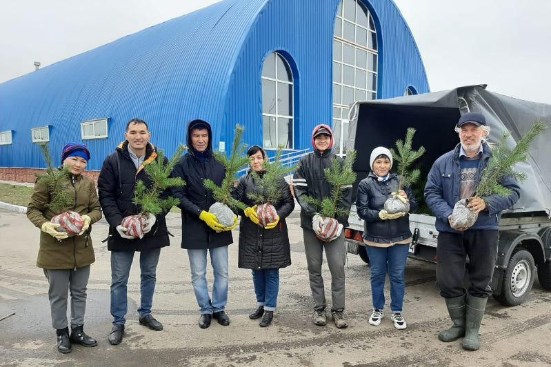 Общественный питомник деревьев развили экоактивисты в Павлодарской области
