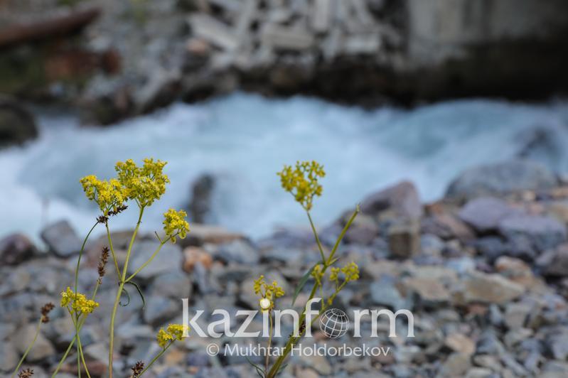 Площадь особо охраняемых природных территорий планируют увеличить в Казахстане