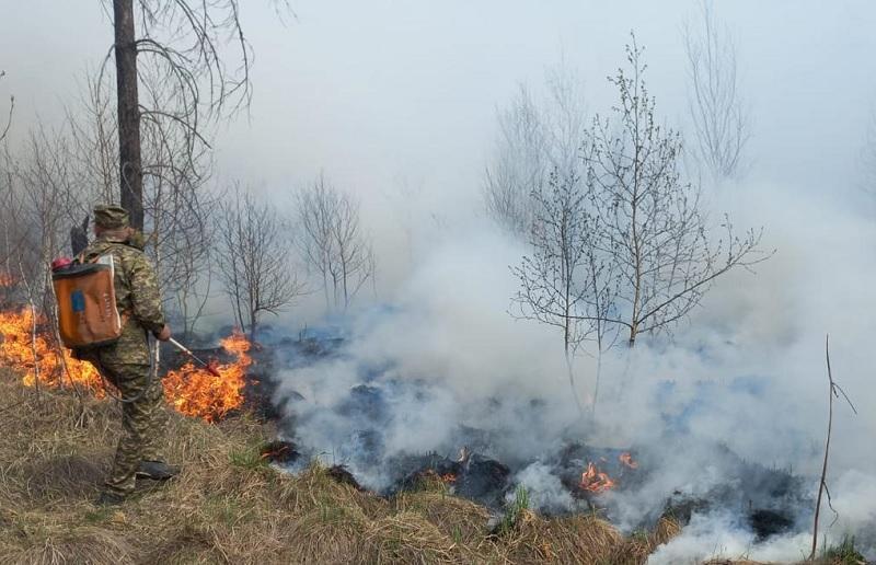 Лесной пожар в ВКО: на место вылетел вице-министр МЧС РК