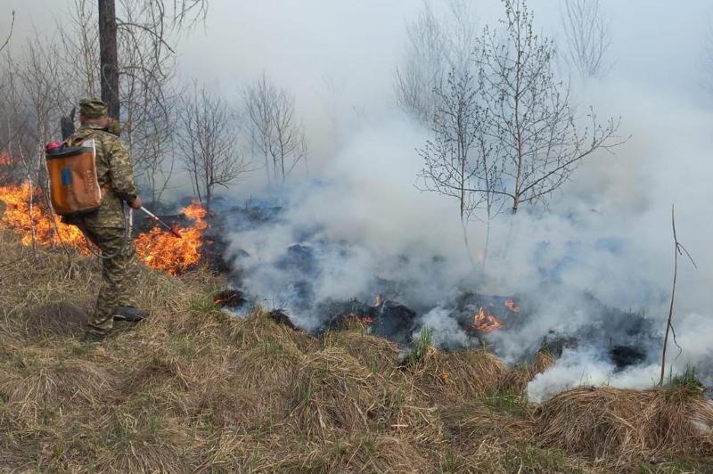 В Риддере ликвидирован пожар в жилой зоне, в лесу тушение продолжается - ДЧС ВКО