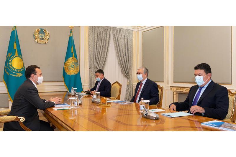 总统接见哈萨克斯坦矿业公司董事会主席