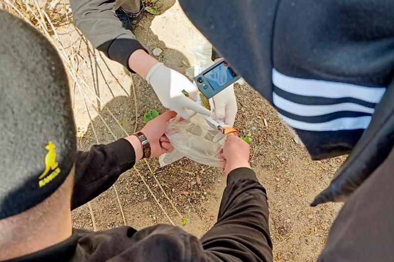 В Павлодарской области пресекли канал поставки марихуаны в колонию