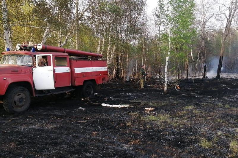Возгорание в лесупроизошлоиз-за сломанного КамАЗав Костанайской области