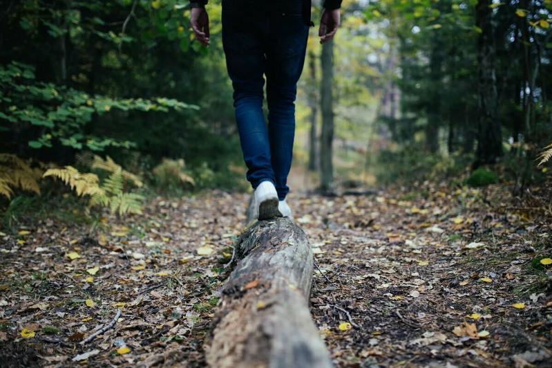 Походы в лес запретят жителям СКО