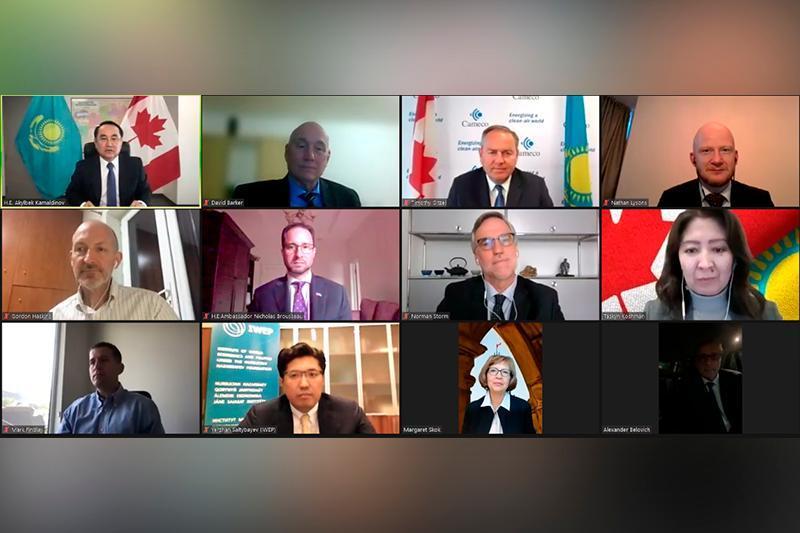 独立30周年:哈萨克斯坦大使馆与加拿大商会举行线上会议