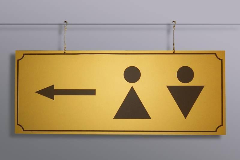 Глава МОН РК выразил неудовлетворение темпами работы по установке внутренних туалетов в школах