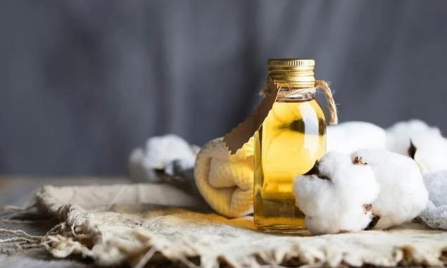 突厥斯坦州计划建设一座棉籽油加工厂