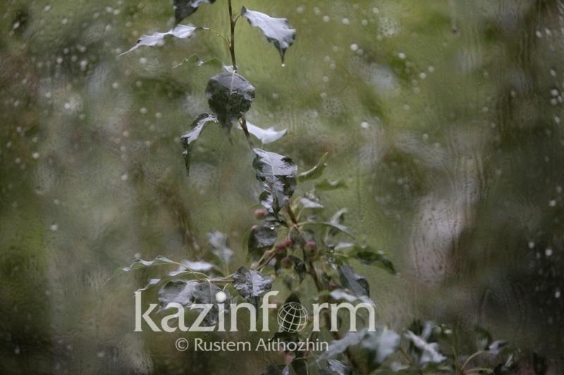 Штормовое предупреждение объявлено в большинстве регионов Казахстана
