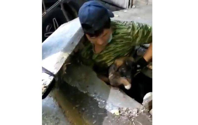 Спасение щенка из-под бетонных плит попало на видео в ВКО