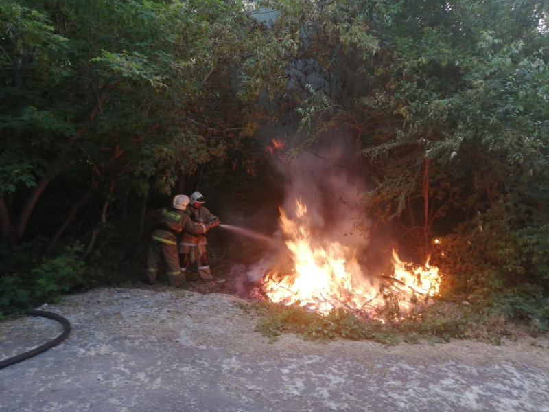 Дом и типография едва не сгорели из-за возгорания тополиного пуха в СКО