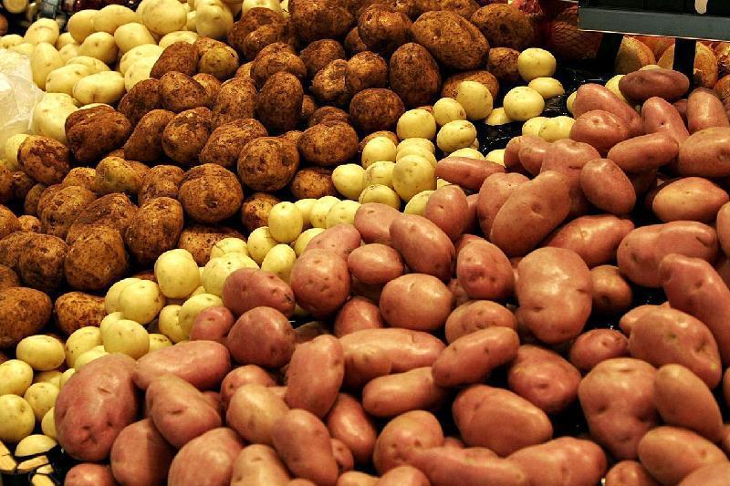 Причину резкого повышения цен на картофель назвал глава Минсельхоза РК