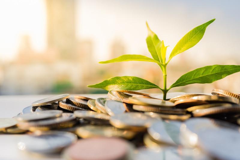 Внести предложения по расширению рынка зеленых инвестиции поручил Касым-Жомарт Токаев