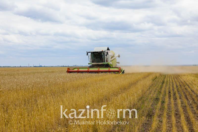 Объем валовой продукции сельского хозяйства составил более 6 трлн тенге за три года