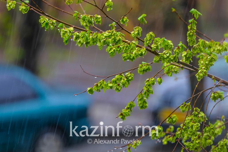Дожди с грозами пройдут 12 июня в Казахстане