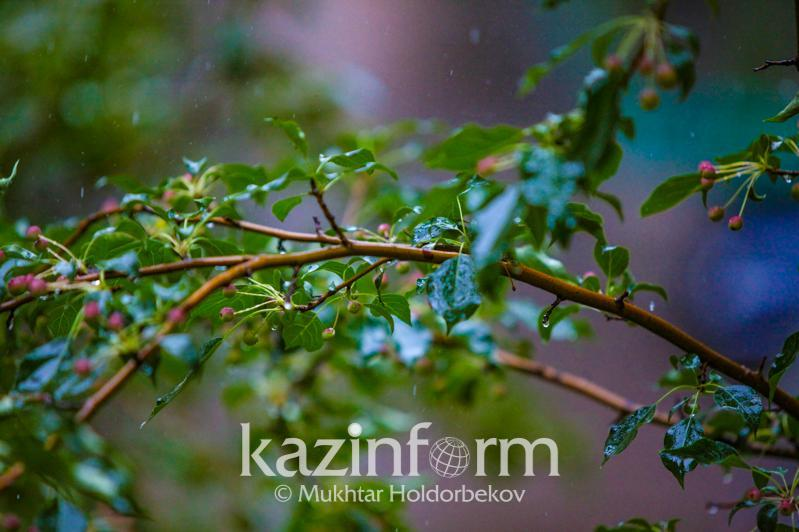 Showers with thunderstorms in store for Kazakhstan