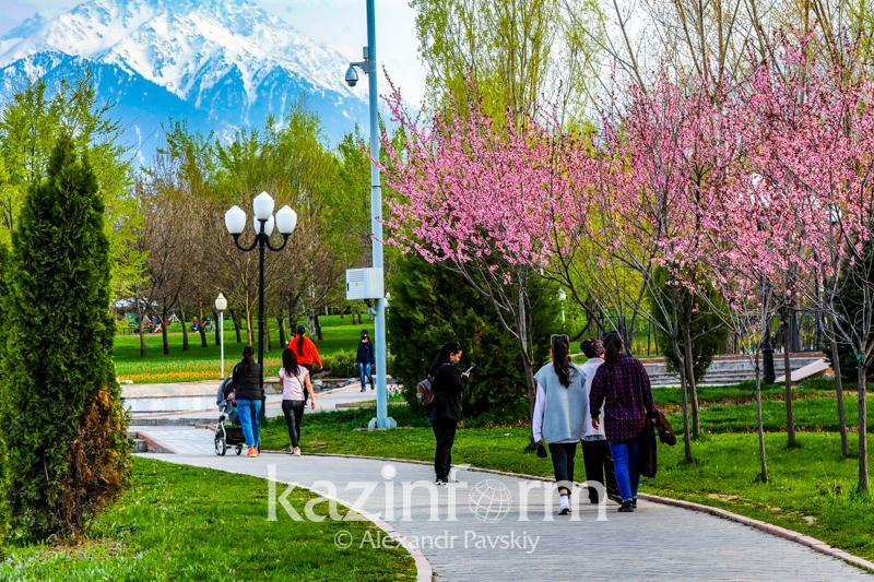 Almaty goes 'green', COVID-19 restrictions remain in place