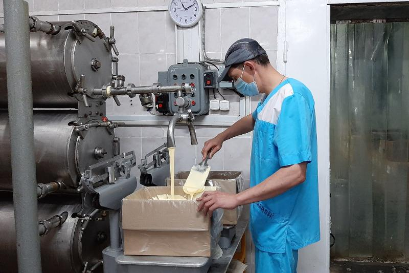 От 35 тонн молочной продукции ежедневно изготавливает предприятие из СКО
