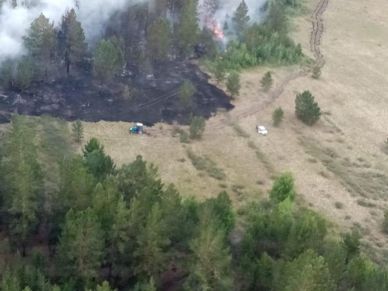 Пять очагов возгорания локализованы в природном резервате «Ертис орманы»