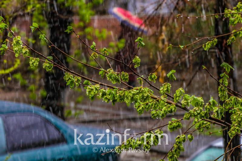 Усиление ветра и дожди прогнозируют в большинстве регионов Казахстана