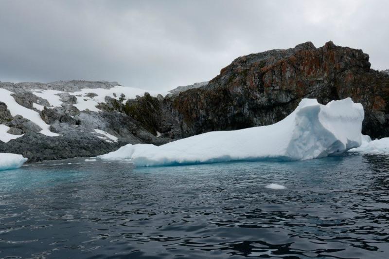Антарктидада +18 даража янги рекорд ҳарорат қайд этилди